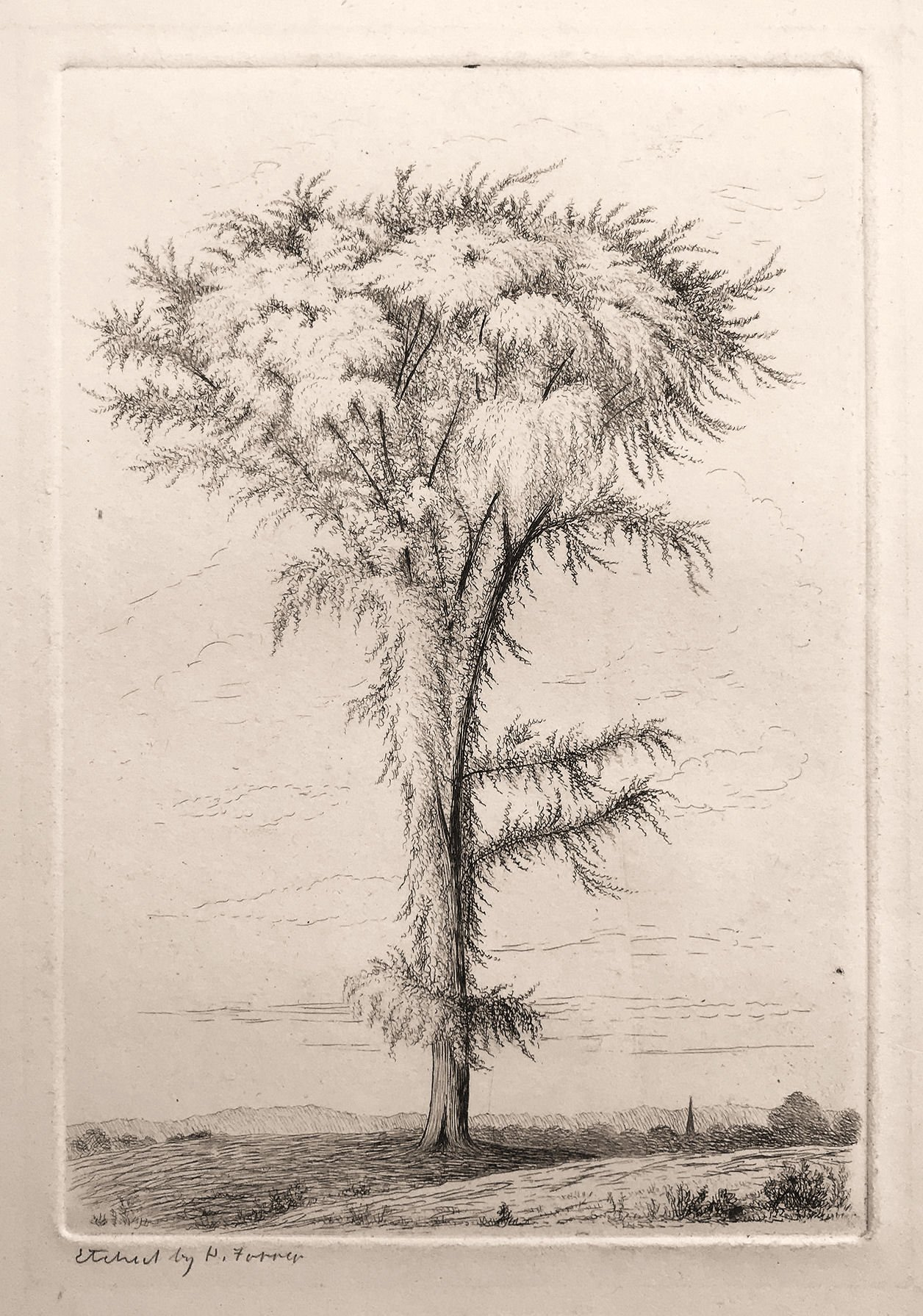 An Early Etching by Henry Farrer